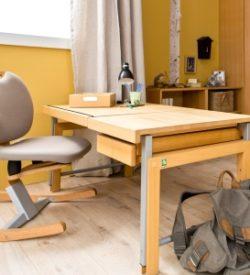 Schreibtische & Stühle